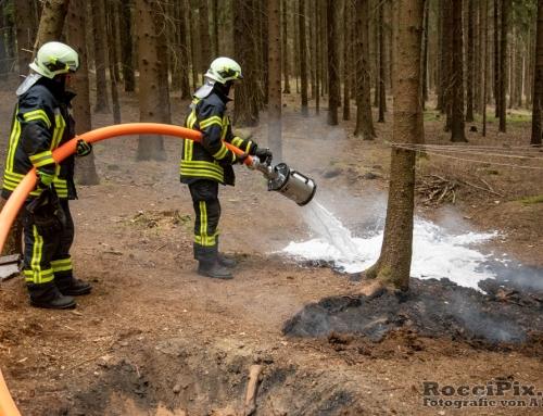 Feuerstelle im Wald